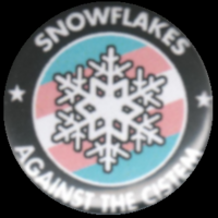 Snowflakes against the Cistem auf Transflagge