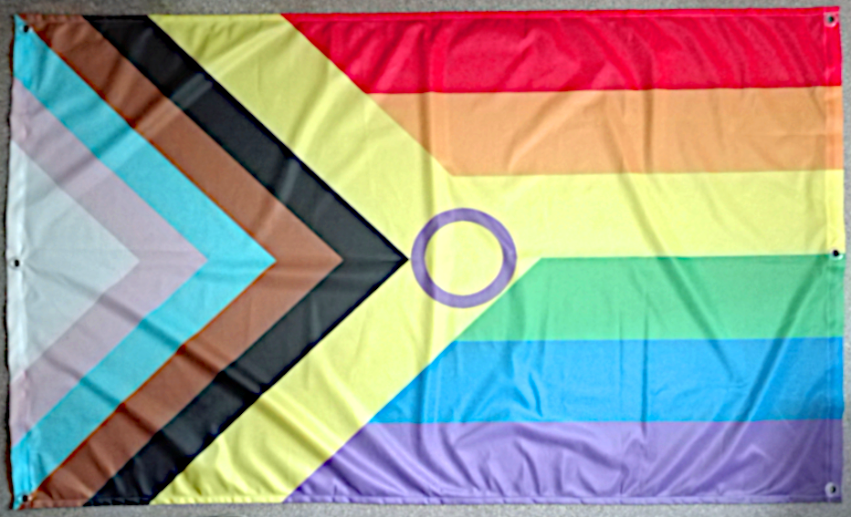 Inter*Progress Regenbogen Flagge mit Ösen 90x150