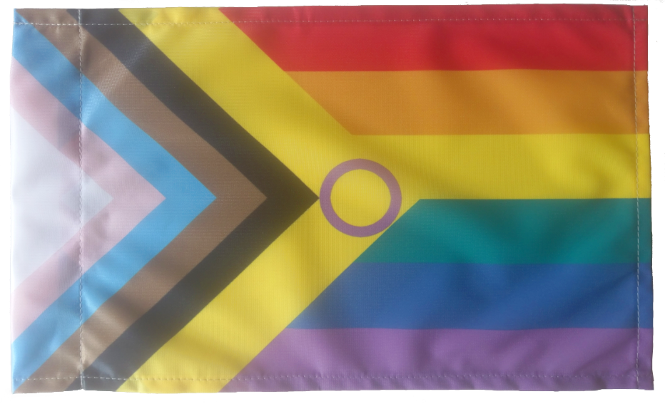 Inter*Progress Regenbogen Flagge mit Hohlsaum 90x150