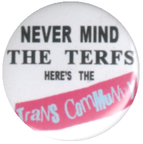 Never Mind the TERFS, Here's the Trans Community